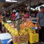 Barkunan di fruta venezolano - José Manuel Dias