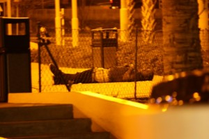 A tira Jais Juliana mata sanger friu e anochi di 15 di yüli – potrèt: José de Bruin
