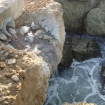Kontaminashon na Playa Canoa - Jose Manuel Dias