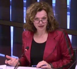Minister di Salubridat Públiko Edith Schippers durante e deliberashon tokante e viro zika