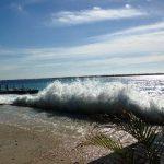 Spice Beach, un playa popular na Boneiru - potrèt Janita Monna