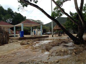 Playa di Lagun a laba bai laman – potrèt Anneke Polak
